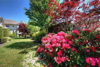Photo 18: 309 4770 52A Street in Delta: Delta Manor Condo for sale (Ladner)  : MLS®# R2271731