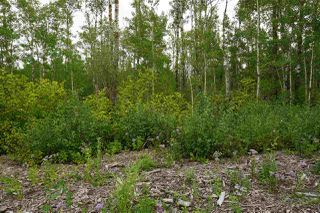 Photo 10: 3406 Twp Rd. 542: Rural Lac Ste. Anne County Rural Land/Vacant Lot for sale : MLS®# E4125530