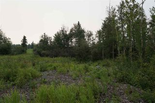 Photo 9: 3406 Twp Rd. 542: Rural Lac Ste. Anne County Rural Land/Vacant Lot for sale : MLS®# E4125530