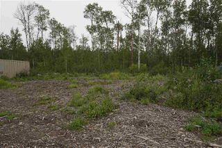 Photo 8: 3406 Twp Rd. 542: Rural Lac Ste. Anne County Rural Land/Vacant Lot for sale : MLS®# E4125530