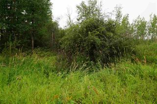 Photo 4: 3406 Twp Rd. 542: Rural Lac Ste. Anne County Rural Land/Vacant Lot for sale : MLS®# E4125530
