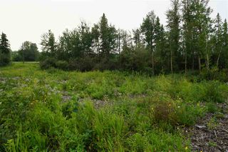 Photo 7: 3406 Twp Rd. 542: Rural Lac Ste. Anne County Rural Land/Vacant Lot for sale : MLS®# E4125530