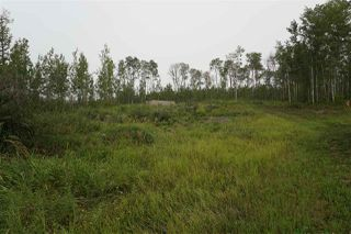Photo 6: 3406 Twp Rd. 542: Rural Lac Ste. Anne County Rural Land/Vacant Lot for sale : MLS®# E4125530