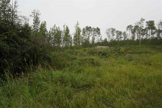 Photo 5: 3406 Twp Rd. 542: Rural Lac Ste. Anne County Rural Land/Vacant Lot for sale : MLS®# E4125530