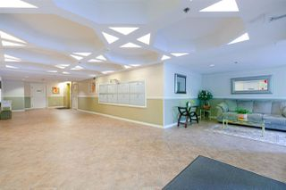 """Photo 18: 213 8300 BENNETT Road in Richmond: Brighouse South Condo for sale in """"MAPLE COURT"""" : MLS®# R2308819"""