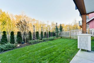 """Photo 19: 79 20498 82 Avenue in Langley: Willoughby Heights Townhouse for sale in """"GABRIOLA PARK"""" : MLS®# R2334254"""