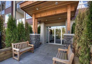 Photo 11: 210 2943 NELSON Place in Abbotsford: Central Abbotsford Condo for sale : MLS®# R2335298