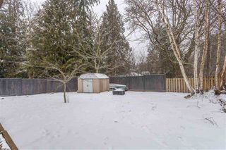 Photo 19: 32547 WILLIAMS Avenue in Mission: Mission BC House for sale : MLS®# R2341104
