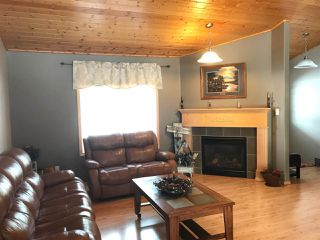 Photo 6: 63319 Rge Rd 435: Rural Bonnyville M.D. House for sale : MLS®# E4146015