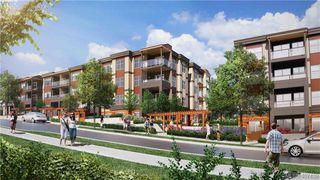 Photo 9: 204 3333 Glasgow Ave in VICTORIA: SE Quadra Condo Apartment for sale (Saanich East)  : MLS®# 809642