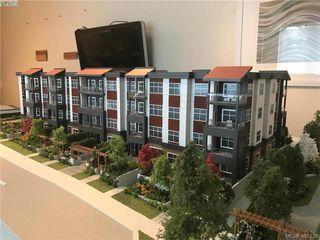 Photo 14: 204 3333 Glasgow Ave in VICTORIA: SE Quadra Condo Apartment for sale (Saanich East)  : MLS®# 809642