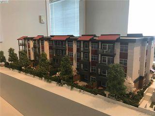 Photo 12: 204 3333 Glasgow Ave in VICTORIA: SE Quadra Condo Apartment for sale (Saanich East)  : MLS®# 809642