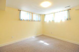 Photo 19: 11667 73 Avenue NW in Edmonton: Zone 15 House for sale : MLS®# E4156870