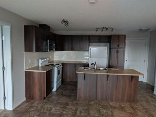 Photo 2: #226 1820_RUTHERFORD RD SW in Edmonton: Zone 55 Condo for sale : MLS®# E4162737