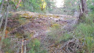 Photo 5: 4157 PORLIER PASS Road: Galiano Island Land for sale (Islands-Van. & Gulf)  : MLS®# R2391090