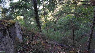 Photo 6: 4157 PORLIER PASS Road: Galiano Island Land for sale (Islands-Van. & Gulf)  : MLS®# R2391090