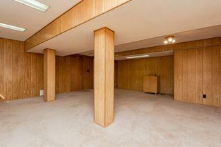 Photo 39: 4339 29 Street in Edmonton: Zone 30 House for sale : MLS®# E4189075