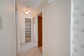 Photo 23:  in Edmonton: Zone 19 House for sale : MLS®# E4198102
