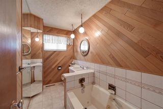 Photo 24:  in Edmonton: Zone 19 House for sale : MLS®# E4198102