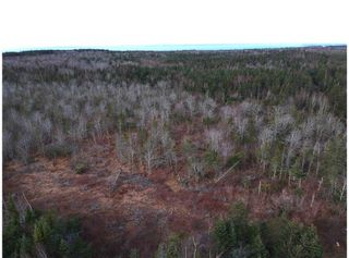 Photo 5: 1963 Gospel Woods Road in Arlington: 404-Kings County Vacant Land for sale (Annapolis Valley)  : MLS®# 202025022