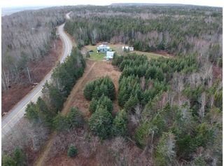 Photo 4: 1963 Gospel Woods Road in Arlington: 404-Kings County Vacant Land for sale (Annapolis Valley)  : MLS®# 202025022