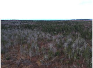 Photo 6: 1963 Gospel Woods Road in Arlington: 404-Kings County Vacant Land for sale (Annapolis Valley)  : MLS®# 202025022