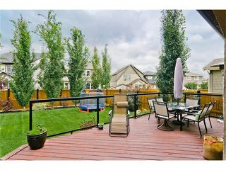 Photo 28: 41 Mahogany Terrace SE in Calgary: Mahogany House for sale : MLS®# C4075273