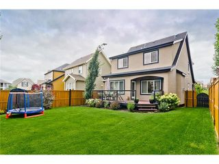 Photo 29: 41 Mahogany Terrace SE in Calgary: Mahogany House for sale : MLS®# C4075273
