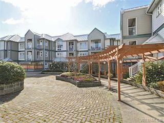 Photo 19: 307 3008 Washington Avenue in VICTORIA: Vi Burnside Condo Apartment for sale (Victoria)  : MLS®# 374086