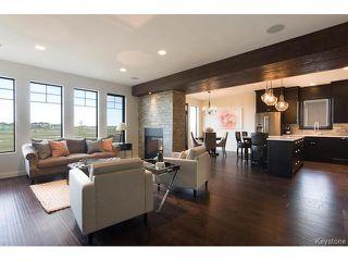 Photo 4: 27 Del Monica Road in Winnipeg: Bridgwater Trails Residential for sale (1R)  : MLS®# 1712163