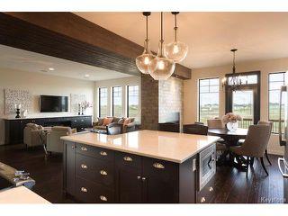 Photo 8: 27 Del Monica Road in Winnipeg: Bridgwater Trails Residential for sale (1R)  : MLS®# 1712163