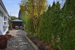 Photo 16: 18 20770 97B AVENUE in Langley: Walnut Grove Townhouse for sale : MLS®# R2261967
