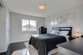 Photo 26: 188 COPPERPOND Road SE in Calgary: Copperfield House for sale : MLS®# C4182363