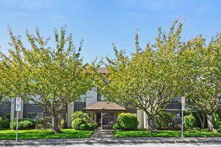 "Photo 1: 301 1531 MERKLIN Street: White Rock Condo for sale in ""Berkley Court"" (South Surrey White Rock)  : MLS®# R2306522"
