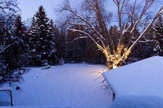 Main Photo: 307 WESTRIDGE Road in Edmonton: Zone 22 House for sale : MLS®# E4133002