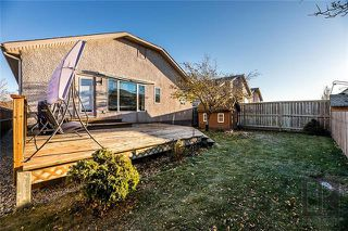 Photo 20: 195 Vineland Crescent in Winnipeg: Residential for sale (1P)  : MLS®# 1828163