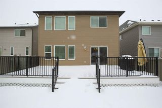 Photo 28: 3960 Claxton Loop in Edmonton: Zone 55 House for sale : MLS®# E4143035