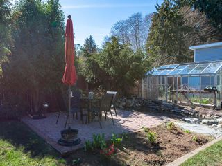 Photo 33: 617 Springbok Rd in CAMPBELL RIVER: CR Campbell River Central House for sale (Campbell River)  : MLS®# 809864