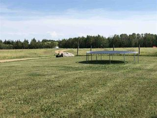 Photo 27: 271024 Twp Rd 465: Rural Wetaskiwin County House for sale : MLS®# E4153114