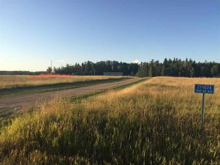 Photo 29: 271024 Twp Rd 465: Rural Wetaskiwin County House for sale : MLS®# E4153114