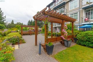 Photo 24: 103 608 Fairway Ave in VICTORIA: La Fairway Condo for sale (Langford)  : MLS®# 817522