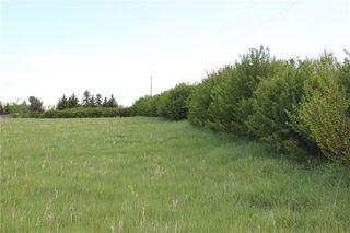 Photo 3: 198010 96th ST W: Rural Foothills County Land for sale : MLS®# C4253512
