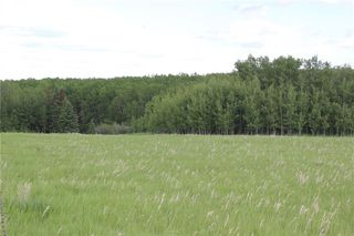 Photo 7: 198010 96th ST W: Rural Foothills County Land for sale : MLS®# C4253512