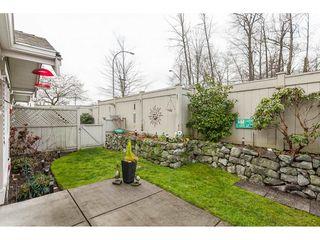 "Photo 19: 71 17516 4 Avenue in Surrey: Pacific Douglas Townhouse for sale in ""DOUGLAS POINT"" (South Surrey White Rock)  : MLS®# R2420929"
