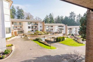 "Photo 16: 511 1353 VIDAL Street: White Rock Condo for sale in ""Seapark West"" (South Surrey White Rock)  : MLS®# R2421883"