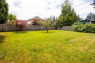 Photo 3: 21022 119 Avenue in Maple Ridge: Southwest Maple Ridge House for sale : MLS®# R2482624