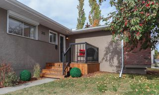 Photo 32: 355 Whitney Crescent SE in Calgary: Willow Park Detached for sale : MLS®# A1041597
