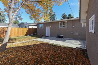Photo 34: 355 Whitney Crescent SE in Calgary: Willow Park Detached for sale : MLS®# A1041597