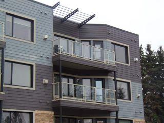 Photo 23: 301 35 STURGEON Road: St. Albert Condo for sale : MLS®# E4219108