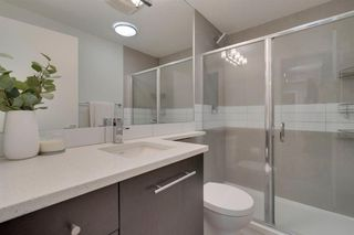 Photo 14: 312 836 Royal Avenue SW in Calgary: Lower Mount Royal Apartment for sale : MLS®# A1052215